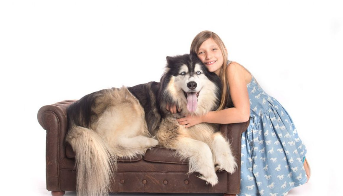 Pet Photography photo session Tikaani and Sophia for book best friends with Sophia and Tikaani