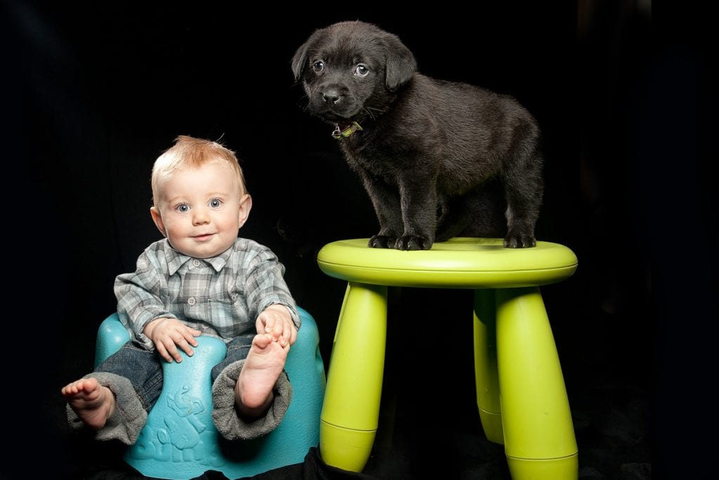 Cute a little baby and a puppy together in a professional dog photographer studio shoot